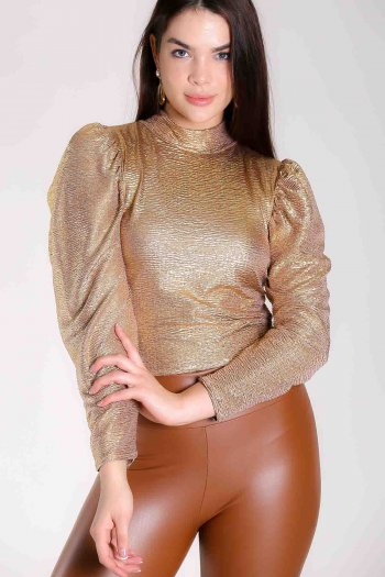 Balloon sleeve shiny blouse