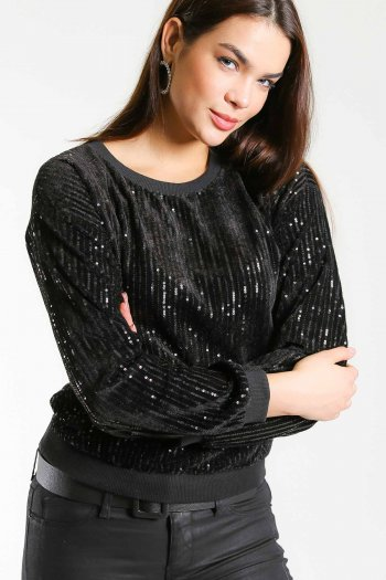 Sequin embroidery velour top